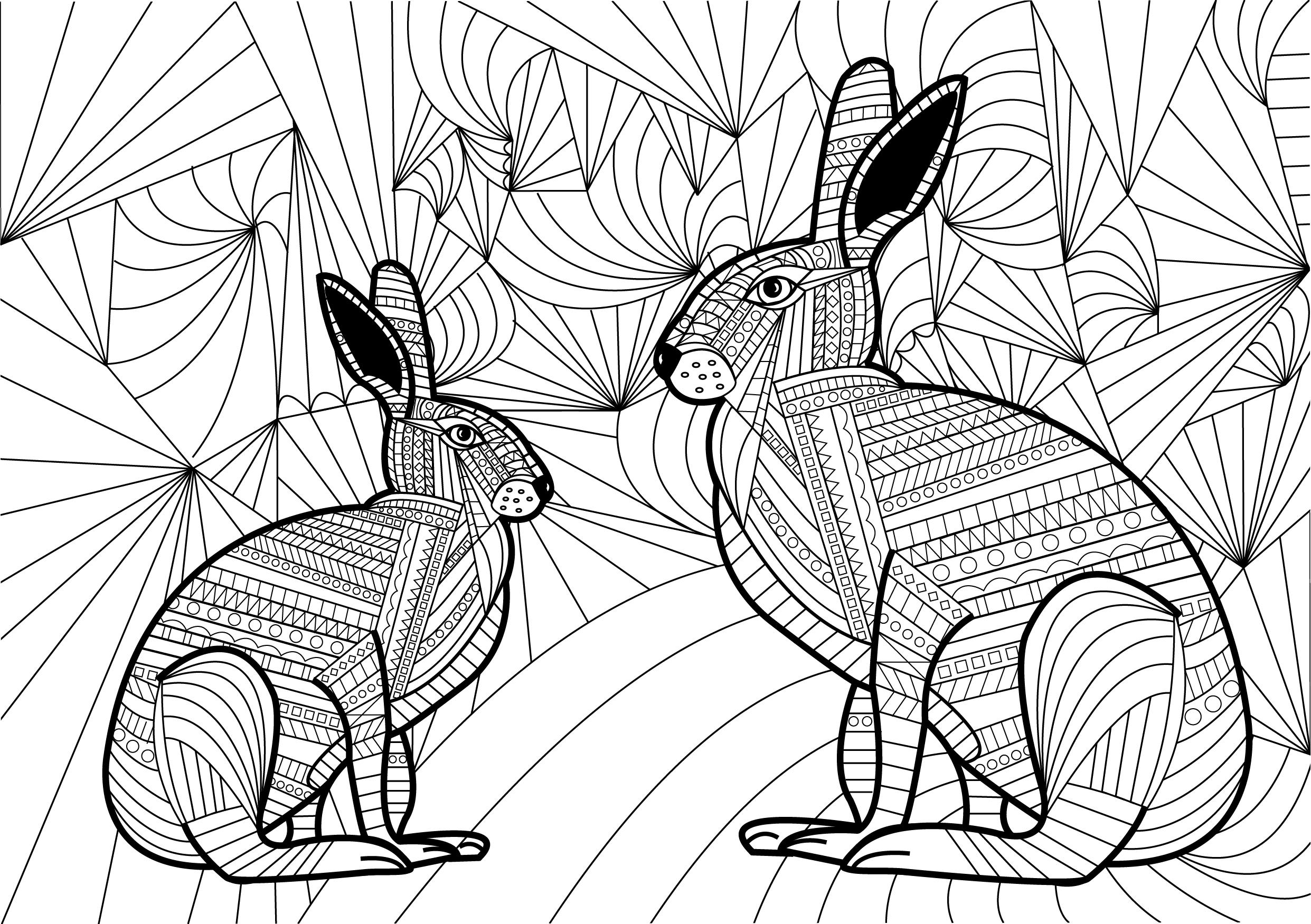 04 - Hare